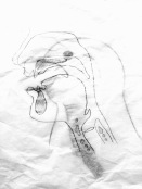 Siren anatomy 4